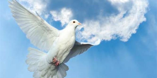 Teaching Kids About The Holy Spirit Discipleblog